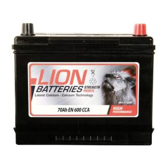Lion 030 Battery – 3 Year Guarantee